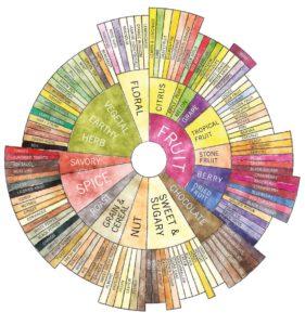 Tasters_Flavor_Wheel